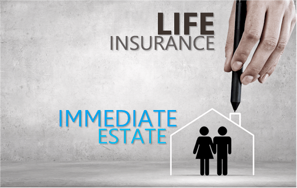 Get your immediate estate with life insurance