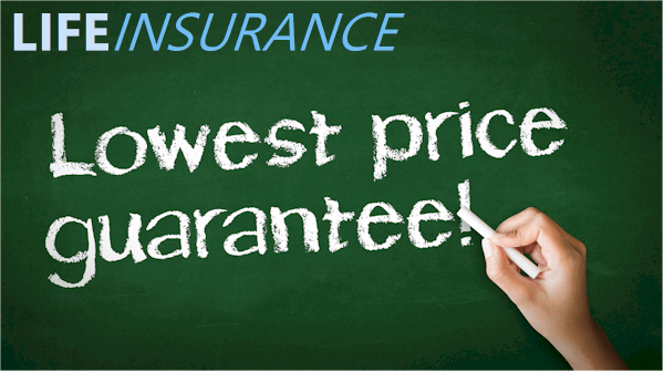 Find best rates for life insurance online